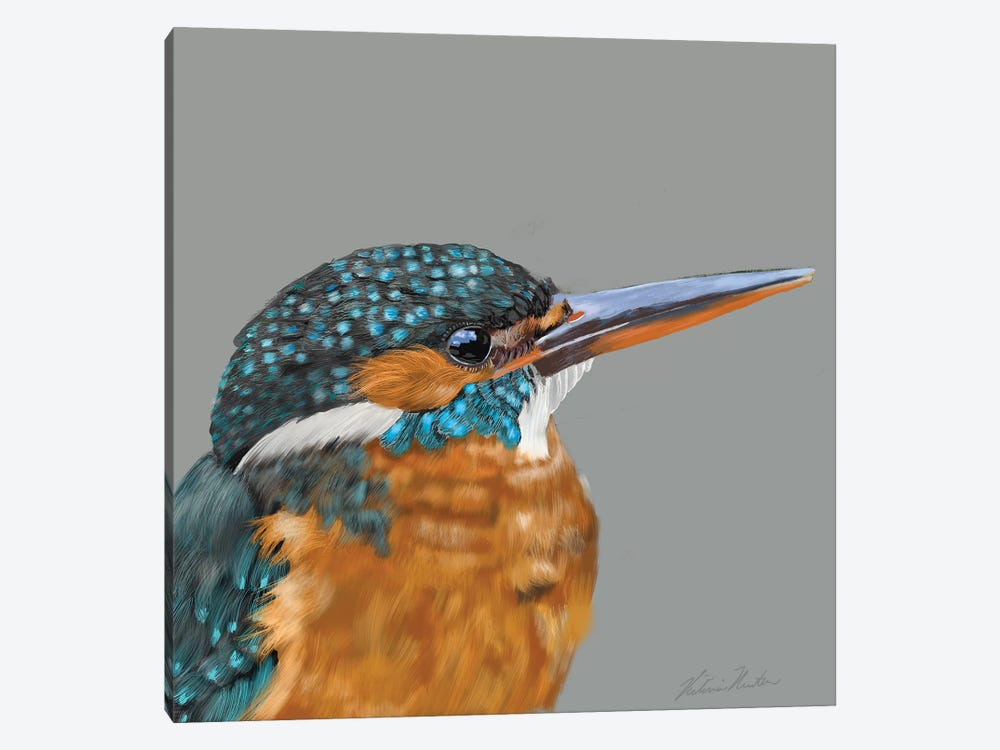 Kingfisher by Vicki Newton 1-piece Canvas Artwork
