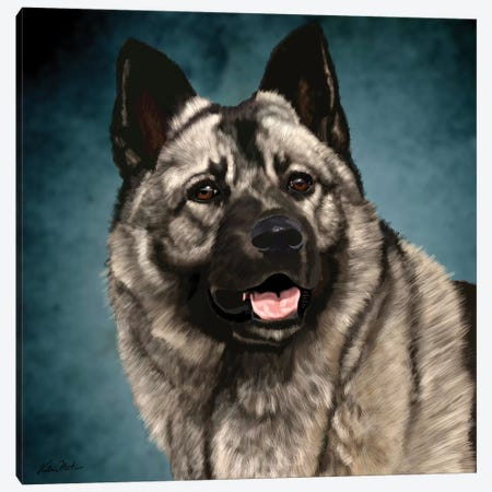 Norwegian Elkhound Canvas Print #VNE81} by Vicki Newton Art Print
