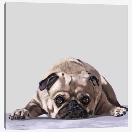 Pug Lying Down Canvas Print #VNE84} by Vicki Newton Canvas Art