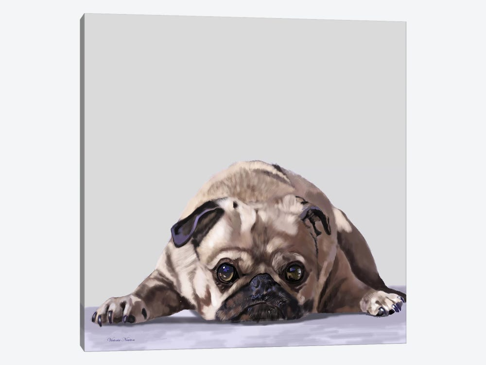 Pug Lying Down by Vicki Newton 1-piece Canvas Artwork