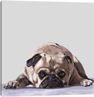 Pug Lying Down Canvas Art Print