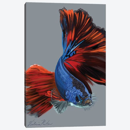 Siamese Fighting Fish Canvas Print #VNE86} by Vicki Newton Canvas Art