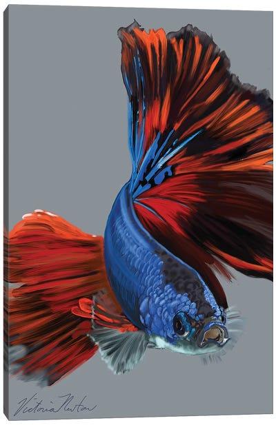 Siamese Fighting Fish Canvas Art Print