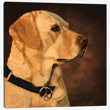Yellow Lab Canvas Print #VNE87} by Vicki Newton Canvas Wall Art