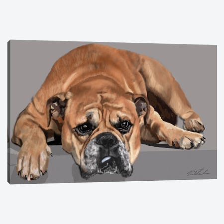 Boxer Resting Canvas Print #VNE88} by Vicki Newton Canvas Print