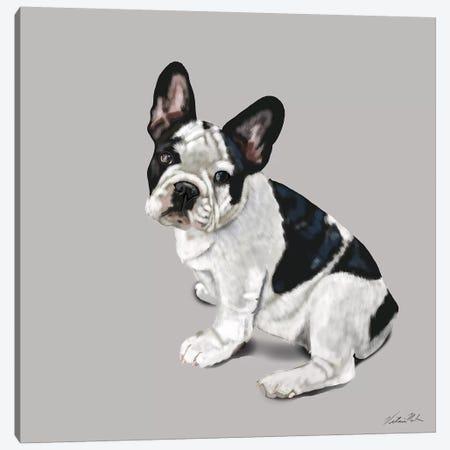 French Bulldog Waiting Canvas Print #VNE90} by Vicki Newton Canvas Wall Art