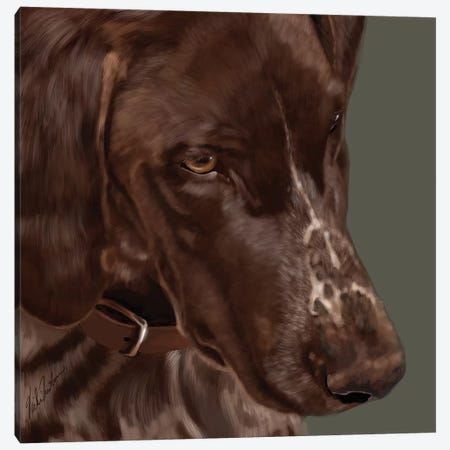 German Shorthaired Pointer Canvas Print #VNE91} by Vicki Newton Canvas Art
