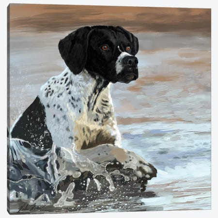 Pointer Canvas Print #VNE94} by Vicki Newton Canvas Print