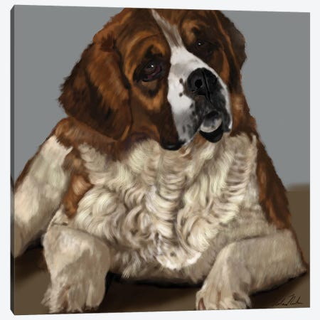 Saint Bernard Canvas Print #VNE95} by Vicki Newton Canvas Art Print