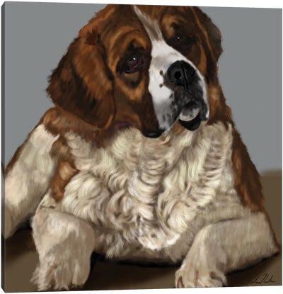 Saint Bernard Canvas Art Print