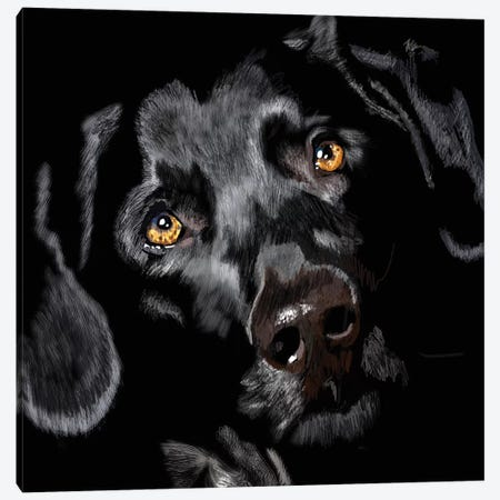 Black Lab On Black Canvas Print #VNE98} by Vicki Newton Canvas Art