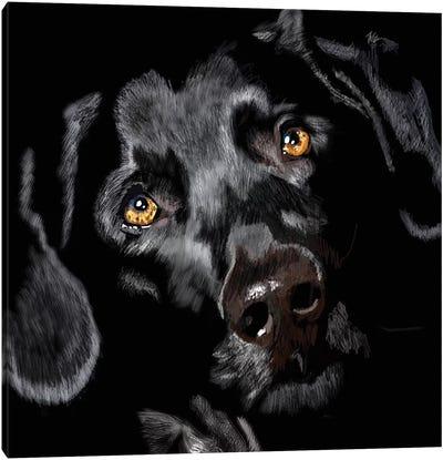 Black Lab On Black Canvas Art Print