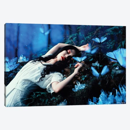 Sleeping Beauty Canvas Print #VOB61} by Victoria Obscure Canvas Art Print