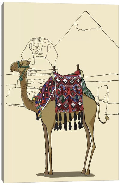 Egypt - Camel Canvas Art Print