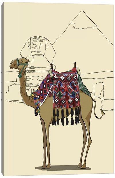 Egypt - Camel Canvas Art Print