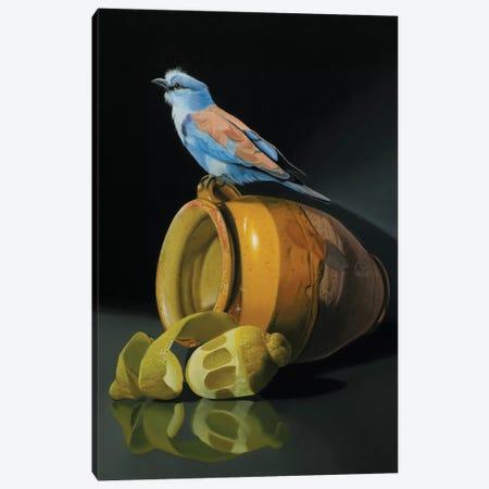 The European Rollet And The Provencal Pot Canvas Print #VQU52} by Valéry Vecu Quitard Canvas Art Print