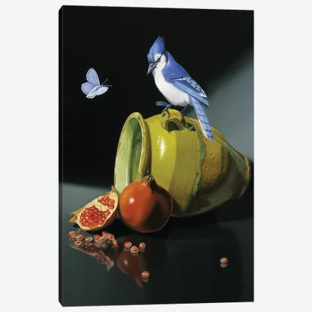 The Jay In Provencal Pot Canvas Print #VQU60} by Valéry Vecu Quitard Canvas Art