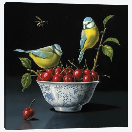 Both Tits And Cherries Canvas Print #VQU7} by Valéry Vecu Quitard Canvas Art