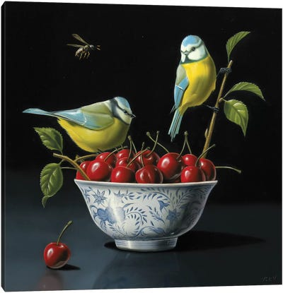 Both Tits And Cherries Canvas Art Print