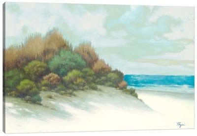 Seashore I Canvas Art Print