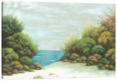 Seashore II Canvas Art Print