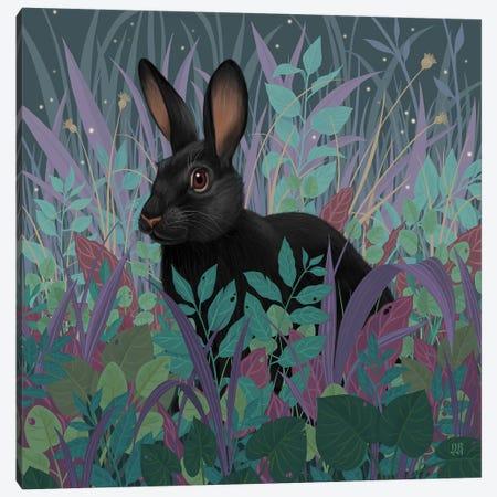 Black Rabbit Canvas Print #VRK13} by Vasilisa Romanenko Canvas Art Print