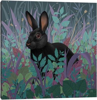 Black Rabbit Canvas Art Print