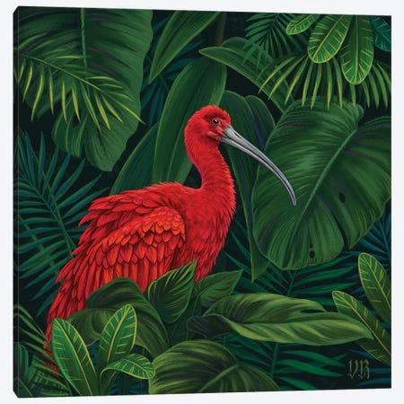 Scarlet Ibis Canvas Print #VRK34} by Vasilisa Romanenko Canvas Wall Art