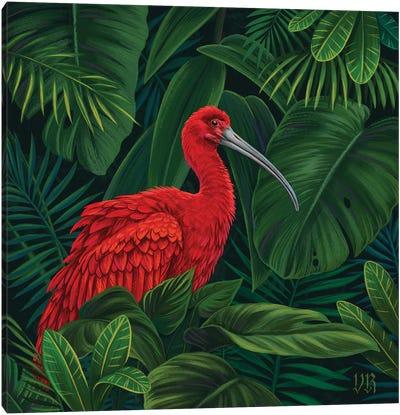 Scarlet Ibis Canvas Art Print