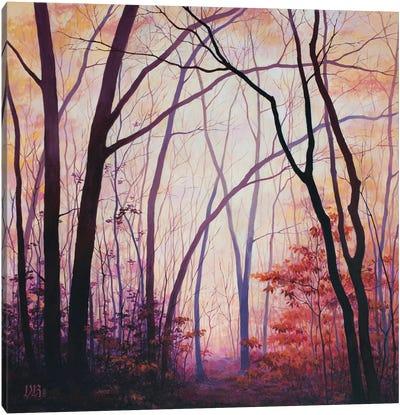 Amber Grove Canvas Art Print