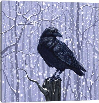 Winter Raven Canvas Art Print
