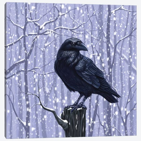 Winter Raven Canvas Print #VRK45} by Vasilisa Romanenko Canvas Print