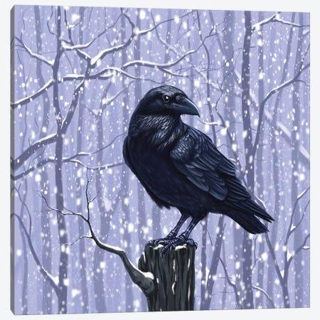 Winter Raven Canvas Print #VRK45} by Vasilisa Romanenko Canvas Print