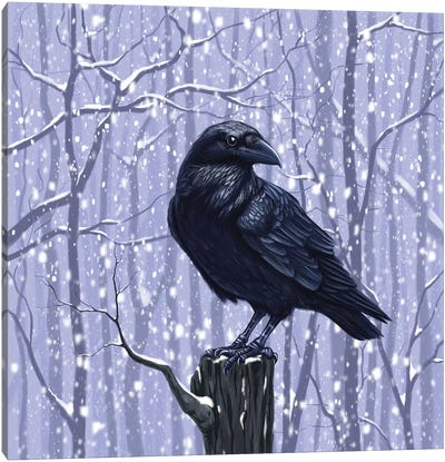 Winter Raven Canvas Art Print