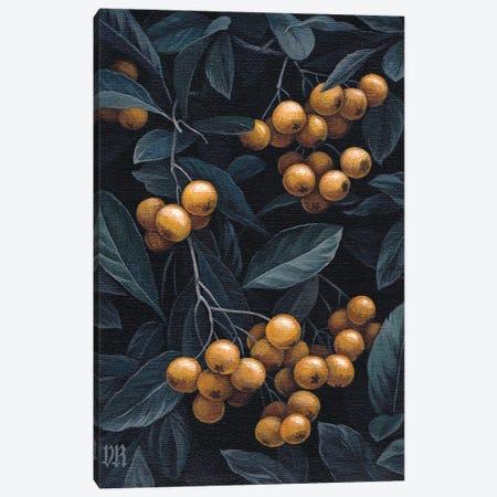 Firethorn Berries Canvas Print #VRK46} by Vasilisa Romanenko Canvas Print