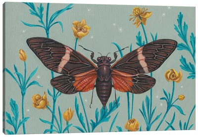 Among The Buttercups Canvas Art Print