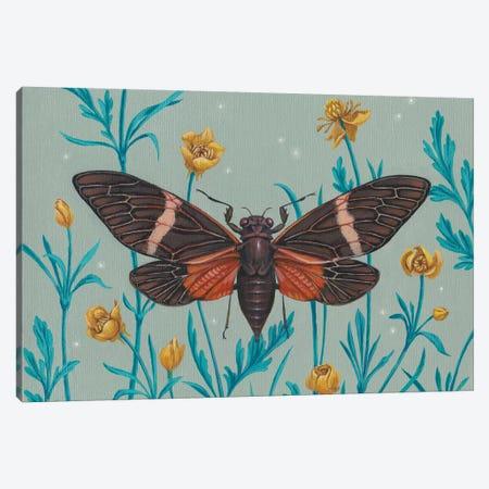 Among The Buttercups Canvas Print #VRK4} by Vasilisa Romanenko Canvas Artwork