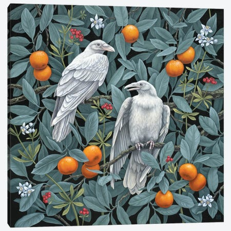 Secret Grove Canvas Print #VRK50} by Vasilisa Romanenko Art Print
