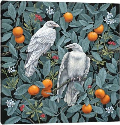 Secret Grove Canvas Art Print