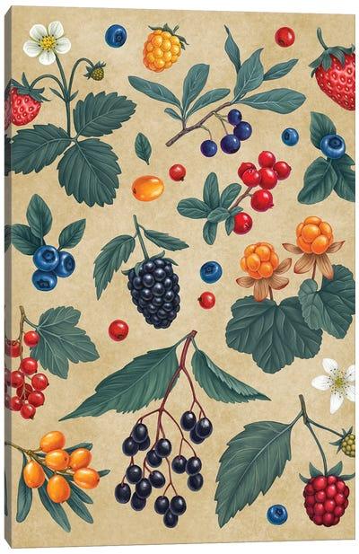 Forest Berris Canvas Art Print