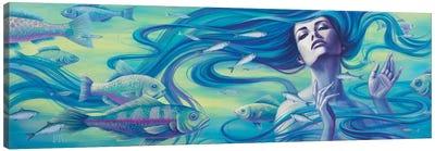 Aquatic III Canvas Art Print