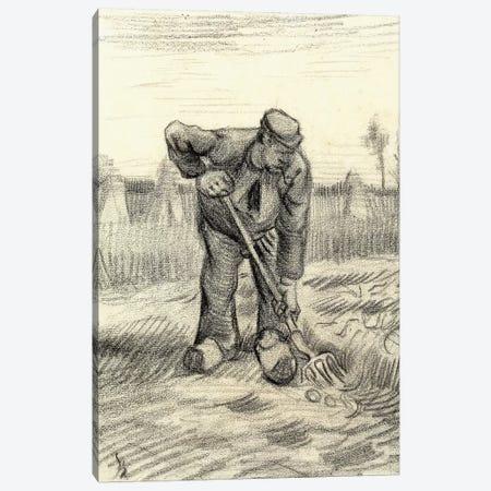 Potato Gatherer, 1885 Canvas Print #VRM9} by Vincent van Gogh Canvas Art Print