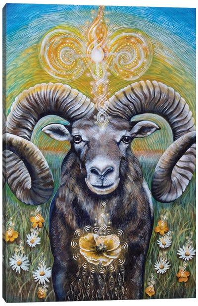 Aries Canvas Art Print