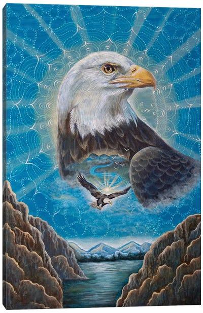 Bald Eagle Medicine Canvas Art Print