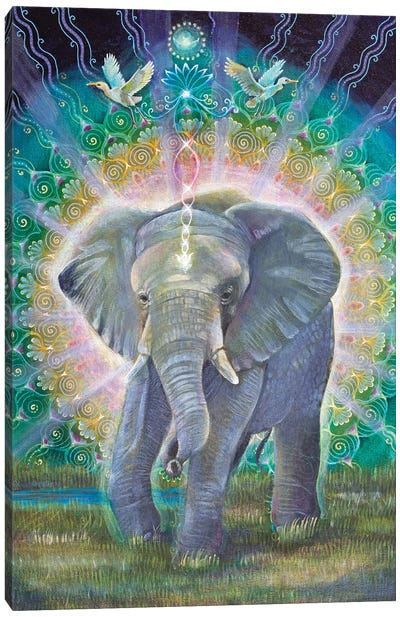 Great Compassion Canvas Art Print