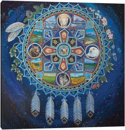 Medicine Dreamcatcher Canvas Art Print