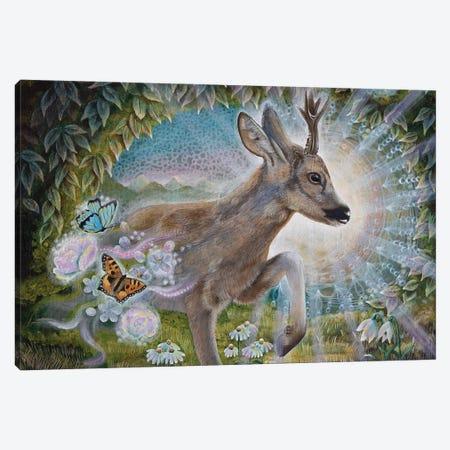 Messenger Of Spring Canvas Print #VRW27} by Verena Wild Art Print