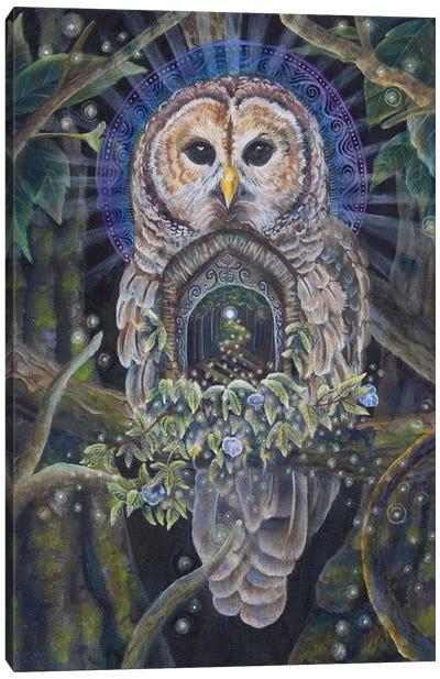 Path Of Silence Canvas Art Print