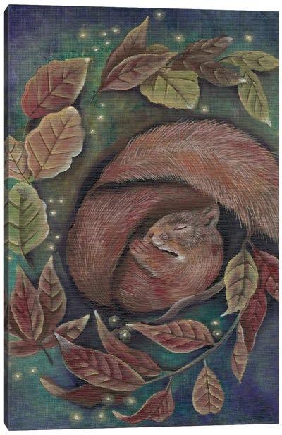 Dreaming Squirrel Canvas Art Print