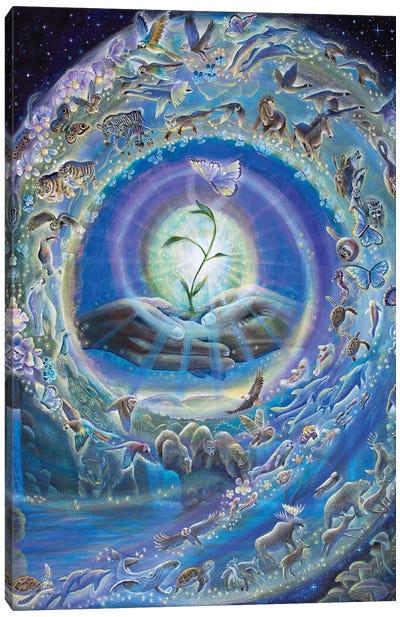 Spiral Of Creation Canvas Art Print
